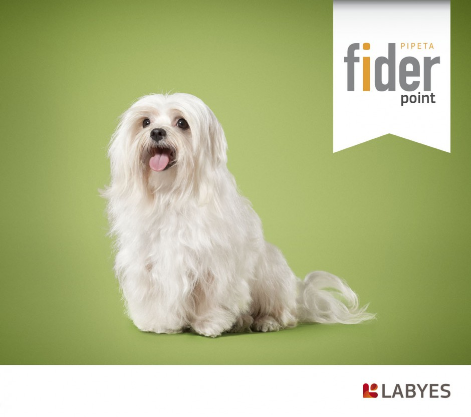 animals 12 - fider labyes