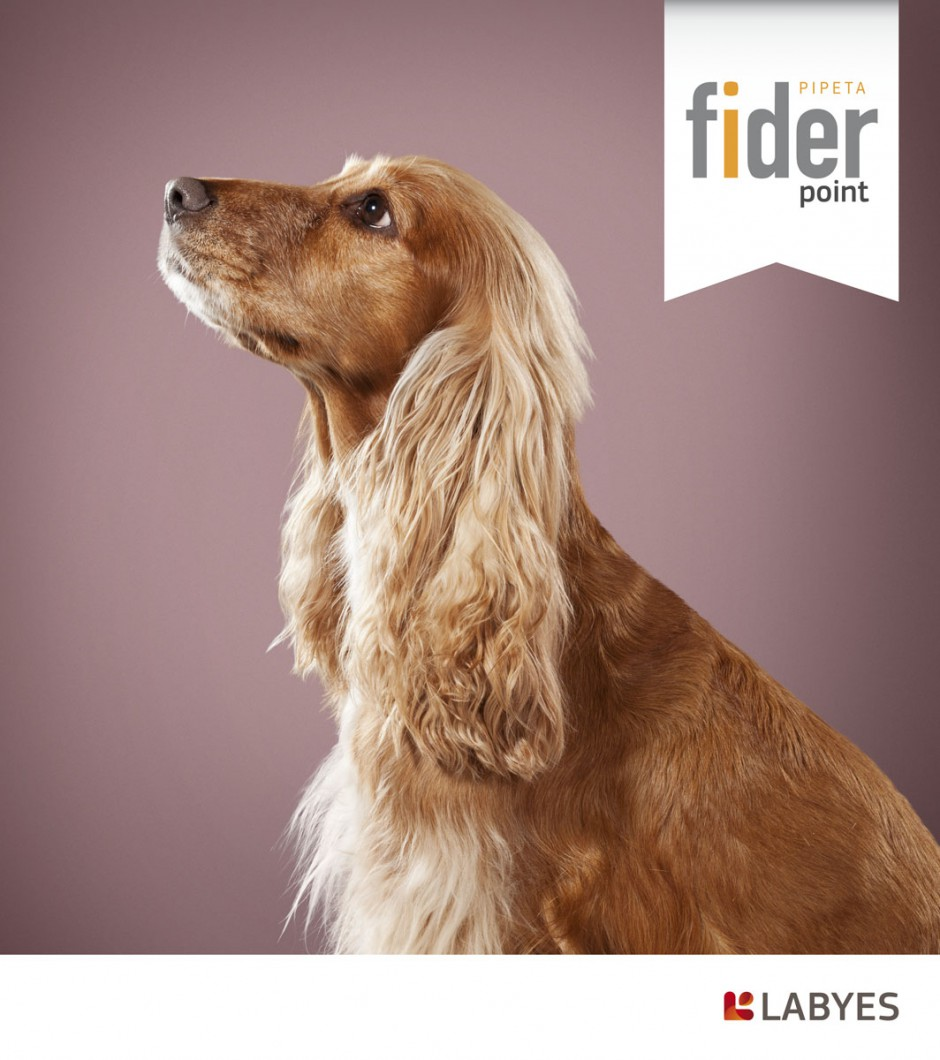 animals 13 - fider labyes