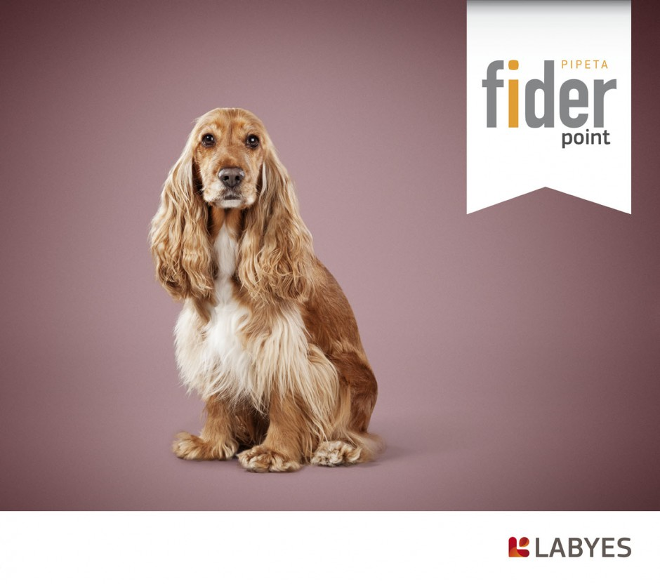 animals 14 - fider labyes