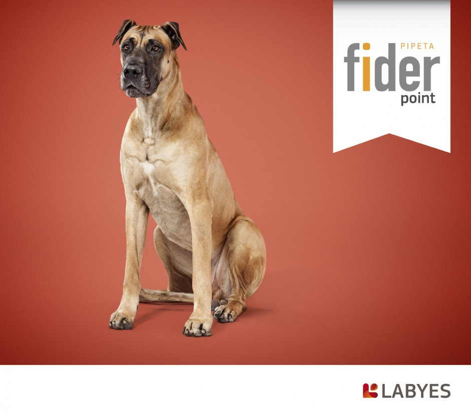 animals 18 - fider labyes